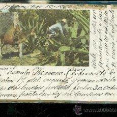Postales: TARJETA POSTAL COSTUMBRISTA. MEXICO. TLACHIQUERO. J. GRANAT. VER DORSO. . Lote 28825990