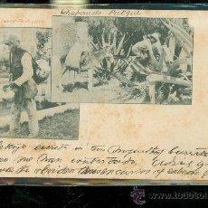 Postales: TARJETA POSTAL COSTUMBRISTA. MEXICO. AGUADOR - FLACHIQUERO. VER DORSO. . Lote 28826145