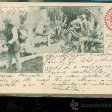Postales: TARJETA POSTAL COSTUMBRISTA. MEXICO. AGUADOR. FLACHIQUERO. VER DORSO. . Lote 28826644
