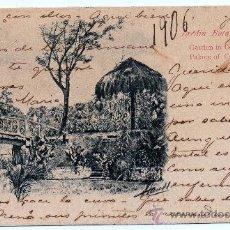 Postales: CUBA, LA HABANA, 1905, JARDIN BOTANICO CAPITANIA GENERAL, CIRCULADA, SIN DIVIDIR, MAGNIFICA. Lote 99369198