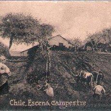 Postales: POSTAL ORIGINAL DECADA DE LOS 30. CHILE. Nº 1980. VER TAMAÑO Y EXPLICACION. Lote 33636953