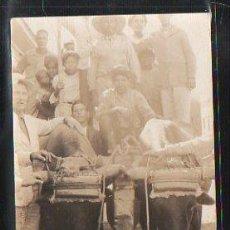 Postales: TARJETA POSTAL DE BUEYES CUBANOS.. Lote 36102953
