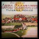 Postales: COLECCIÓN EN ACORDEON DE LA PRETIGIOSA COMPAÑIA WESTERN PUBLISHING & NOVELTY CO. AGUA CALIENTE. Lote 36582513