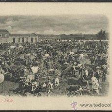 Postales: CHILE - CHILLAN LA FERIA - REVERSO SIN DIVIDIR - (15.049). Lote 36847166