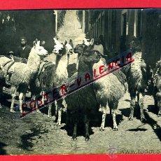 Postales: POSTAL LA PAZ, BOLIVIA, LLAMAS, FOTOGRAFICA, P79736. Lote 39368962