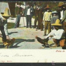 Postales: MEXICO - PELEA DE GALLOS - (2808). Lote 42354928