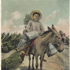 Postales: MEXICO. LECHERO. POSTAL COLOR, SIN CIRCULAR, C. 1910. Lote 42515853