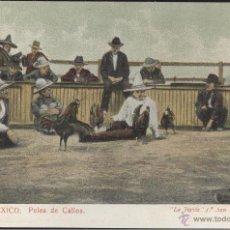 Postales: MEXICO. PELEA DE GALLOS. POSTAL COLOR, SIN CIRCULAR, C. 1908. Lote 42858000