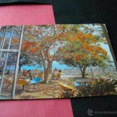 Postales: CUBA MIRADOR DE BELLOMONTE ISLA DE PINOS LA DE LAS FOTOS MIRA MAS POSTALES EN MI TIENDA . Lote 43020999