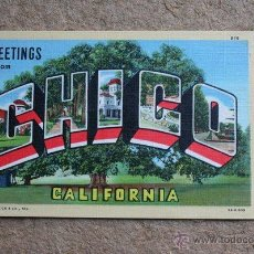 Postales: GREETINGS FROM CHICO. CALIFORNIA. PICTORIAL WONDERLAND.. Lote 46094730