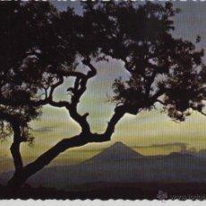 Postales: POSTAL ATARDECER EL SALVADOR. Lote 47384336