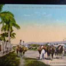 Postales: MATANZAS CUBA - CAVES ROAD - IN THE WAY TO BELLAMAR CAVES. Lote 49414328