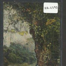 Postales: SAN LORENZO - PERU - CAMINO A CHANCHAMAYO - (ZB-2290). Lote 49435887