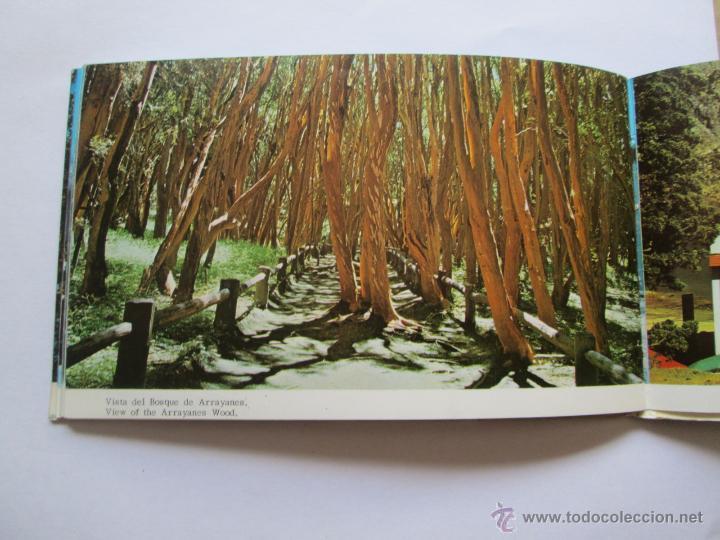 Postales: BARILOCHE 80 VISTAS COLOR, CIRCA 1965 - ALBUM PHOTOS - Foto 9 - 49455196