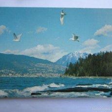 Postales: VANCOUVER CANADA, KM 55 STANLEY PARK. Lote 55939316