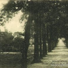 Postales: MONTEVIDEO - PRADO. AVENIDA DE LOS EUCALIPTUS - CIRCULADA - 1918. Lote 56499520