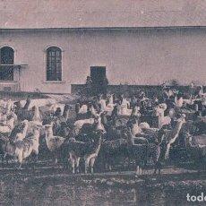 Postales: POSTAL LLAMAS - PERU . S ROJAS, CIRCULADA. Lote 68391009