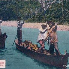 Postales: CANOAS DE INDIOS NATIVOS - PUERTO RICO LA EXPRESS JOSE MONTERO. Lote 69293145
