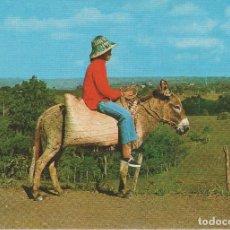 Postales: LOTE B- POSTAL SAN JOSE DE LAS MATAS REPUBLICA DOMINICANA BURRO. Lote 83496312