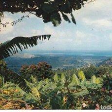 Postales: PUERTO RICO EL YUNQUE POSTAL CIRCULADA . Lote 99370643