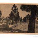 Postales: POSTAL POST CARD POSTCARD ARGENTINA NEUQUÉN PLAZA AVENIDA ARGENTINA VER FOTO/S Y DESCRIPCIÓN. Lote 101677067