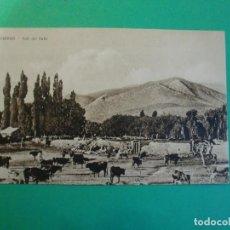 Postales: TUCUMAN TAFI DEL VALLE GANADO TARJETA POSTAL O.H. B.A. N. 34 - ARGENTINA AÑOS 20. Lote 109367903