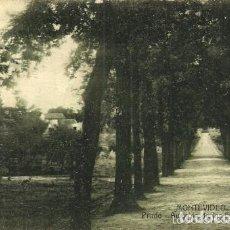 Postales: MONTEVIDEO - PRADO. AVENIDA DE LOS EUCALIPTUS - CIRCULADA - 1918. Lote 134834815
