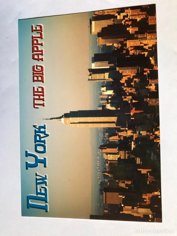 6 POSTALES DE NUEVA YORK, SIN ESCRIBIR. (Postales - Postales Extranjero - América)