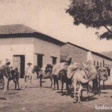Postales: POSTAL ORIGINAL. DÉCADA 30. HONDURAS. BURROS CARGANDO. Nº 1674. Lote 148633794