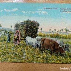Postales: CUBA. MATANZAS. CARGANDO CAÑA.. Lote 152326554