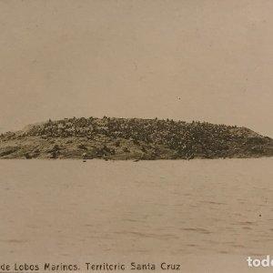 Argentina. Isla de Lobos Marinos. Territorio de Santa Cruz