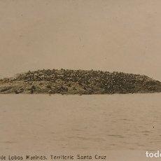 Postales: ARGENTINA. ISLA DE LOBOS MARINOS. TERRITORIO DE SANTA CRUZ. Lote 149271418