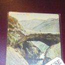 Postales: ARGENTINA - PUENTE DEL INCA , JOSE KONIG Y CIA MENDOZA REVERSO SIN DIVIDIR 14X9 CM. . Lote 159679494