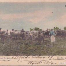 Postales: QUITO (ECUADOR) - ALREDEDORES DE QUITO - LABORES AGRICOLAS. Lote 164642750