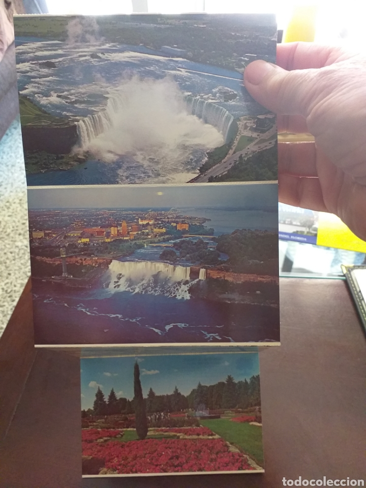 POSTALES CATARATAS DE NIAGARA (Postales - Postales Extranjero - América)