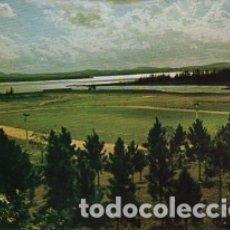 Postales: CUBA - ISLA DE LA JUVENTUD - PAISAJE PINERO - SIN CIRCULAR . Lote 182880987