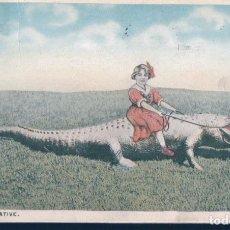 Postales: POSTAL A FLORIDA NATIVE - A GIRL RIDE A CROCODILE - NIÑA MONTADA EN COCODRILO - CIRCULADA - AMERICAN. Lote 191682657