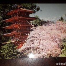 Postales: Nº 36397 POSTAL ESTADOS UNIDOS JAPANESE TEA GARDEN SAN FRANCISCO CALIFORNIA. Lote 195340071