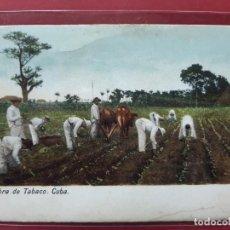Postales: LUGARES DE CUBA-A PRINCIPIOS DE SIGLO-SIN CIRCULAR. Lote 195730911
