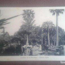 Postales: ANTIGUA POSTAL BUENOS AIRES. JARDINES DE LA RECOLETA. A26. PEUSER.. Lote 195741316