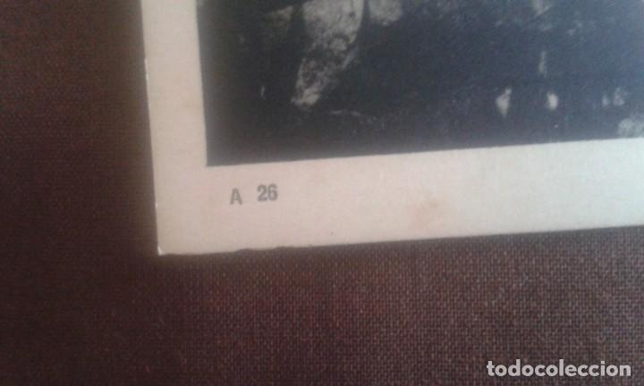 Postales: ANTIGUA POSTAL BUENOS AIRES. JARDINES DE LA RECOLETA. A26. PEUSER. - Foto 4 - 195741316