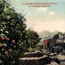 Postales: SOUTHERN CALIFORNIA. A TRIP THROUGH THE ORANGE GROVES. RAILWAY. Lote 196138757