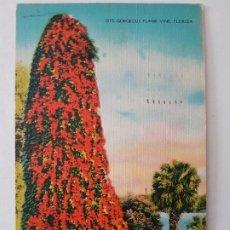 Postales: FLORIDA USA POSTAL 1942 CON SELLO CENSURA AL DORSO. Lote 197434215