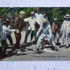 Cartoline: POSTAL CUBA - HABANA RIÑA DE GALLOS - COCK FIGHT - JORDI. Lote 211429861