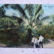 Postales: POSTAL CUBA - COCOTEROS - COCOANUT PALMS - HARRIS. Lote 211505612