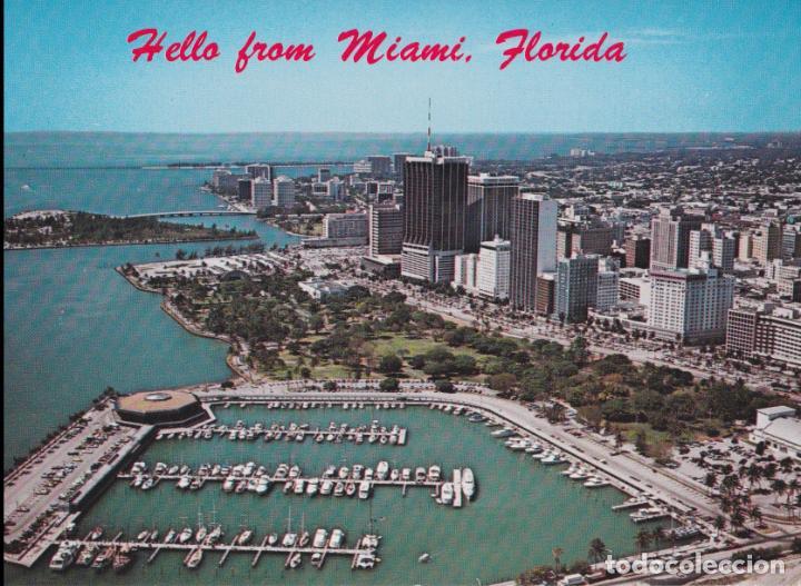 AMERICA, FLORIDA, MIAMI, ACUARIO - PHOTO BYJOE CALDERONE 7032 - S/C (Postales - Postales Extranjero - América)