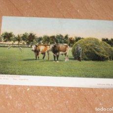 Postales: POSTAL DE VISTA CAMPESTRE. Lote 222527792