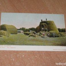 Postales: POSTAL DE VISTA CAMPESTRE. Lote 222527823