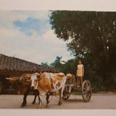 Cartes Postales: BOLIVIA - SANTA CRUZ - P46183. Lote 240944590