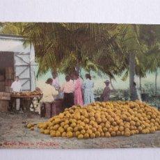 Postales: PUERTO RICO - EMPAQUETADO DE FRUTA - P46891. Lote 243818610